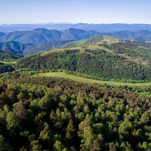 Medi Natural i Desenvolupament Rural