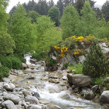 Travessant el riu Tec