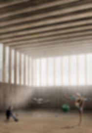 Bâtiment Sportif Scolaire Pestalozzi