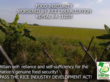 FOOD INSECURITY WORSENED BY RICE LIBERALIZATION