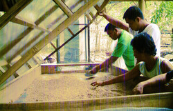 Making of Rice Dryer