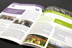 PONZO_brochure_2