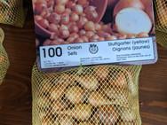 Onion Sets - Yellow