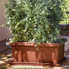 Rigata Plant Box - Terracotta