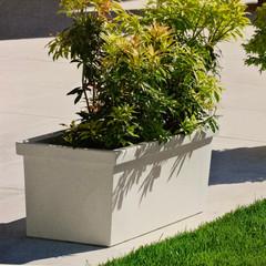 Siepi Plant Box - Charcoal