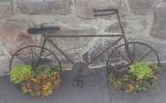 Vintage Bicycle Wall Planter - Bronze
