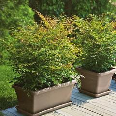 Akea Plant Box - Charcoal