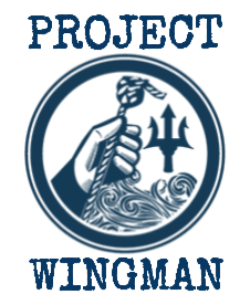 Project Wingman (1).png