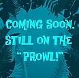 Bio_Coming_Soon (AQUA)-01.png