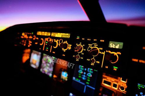 Detailed Flight Control Unit A320