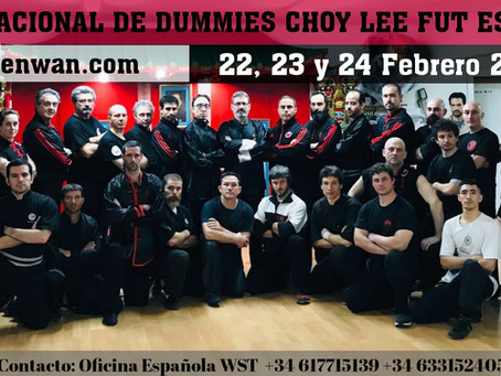 Segundo curso nacional de Dummies