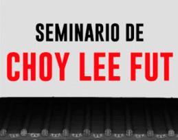 Seminario Choy Lee Fut