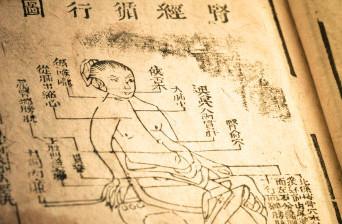 Curso fundamentos de la MTC aplicada a la práctica del Luohan Chikung