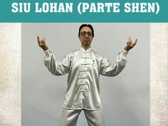 2º Curso de Siu Lohan desde WST España.