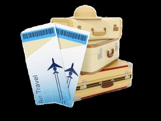чемоданы-пнг.png