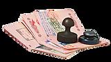 паспорт.png
