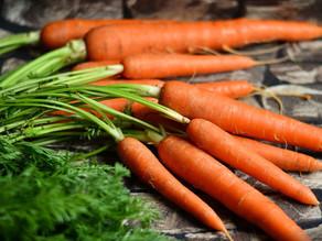 Comment les carottes peuvent aider à mieux comprendre la nomenclature CPV dans les marchés publics