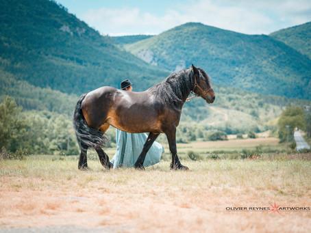 Cheminer avec les chevaux, 14 juillet