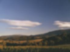 Le Plateau.jpg