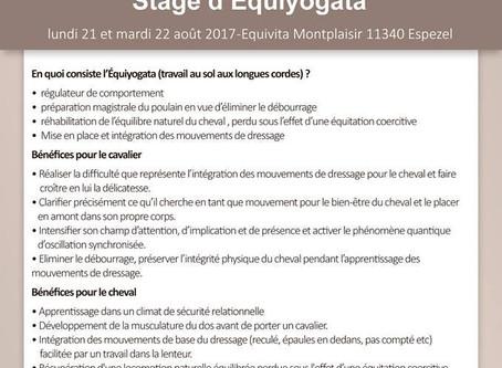 Stage d'Equiyogata stage du 21 au 22 août 2017 avec Arlette (Christine) Agassis
