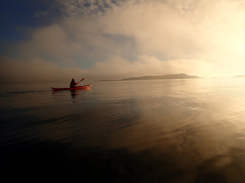 Surf ned Drammenselva og silkeføret på havet....