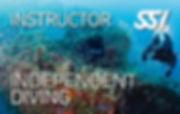 Independet Diving Instructor