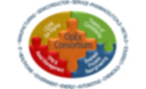 OpEx Consortium Puzzle Website Blue.jpg