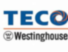 TECO Westinghouse logo newsletter.jpg