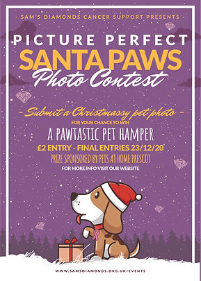 Santa Paws Poster.jpg