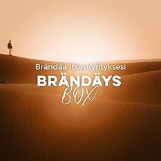 Brandays_box.jpg