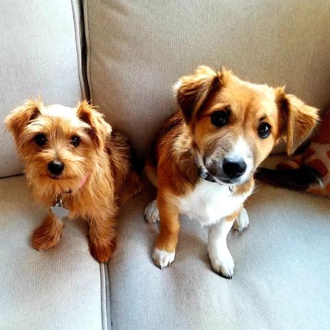 Cleo and JoJo