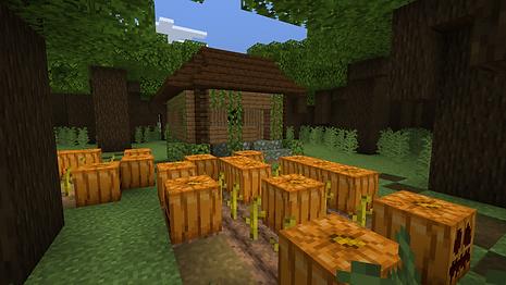 Minecraft 30_09_2021 14_52_39.png