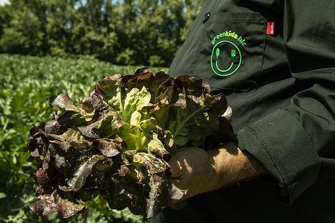 Salade Greenkids