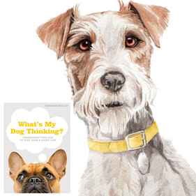 Book: What's My Dog Thinking?