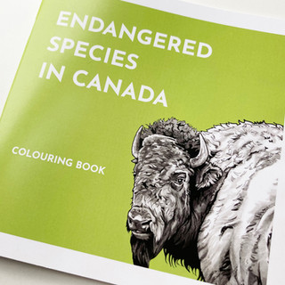 Canadian Endangered Species Colouring Book
