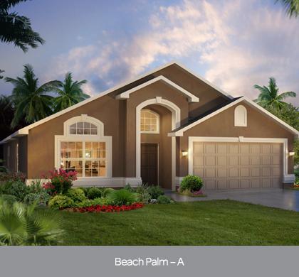 solterra - beach palm.jpg