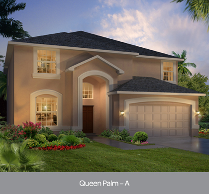 solterra - queen palm.jpg