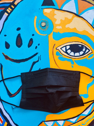 Wear a Mask * Artist Collection