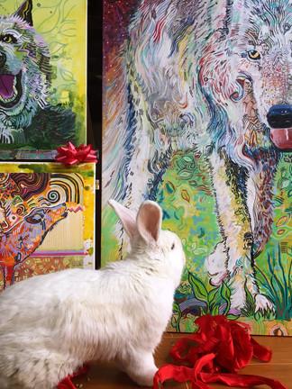 * Sophia the Studio Bunny