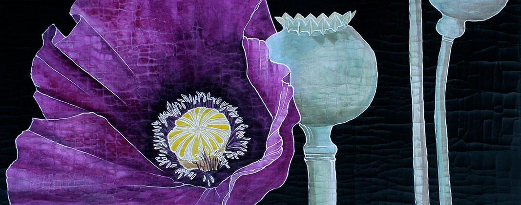 Deep Purple Poppy w/ Pods