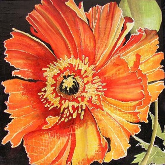 Frilly RedOrange Poppy