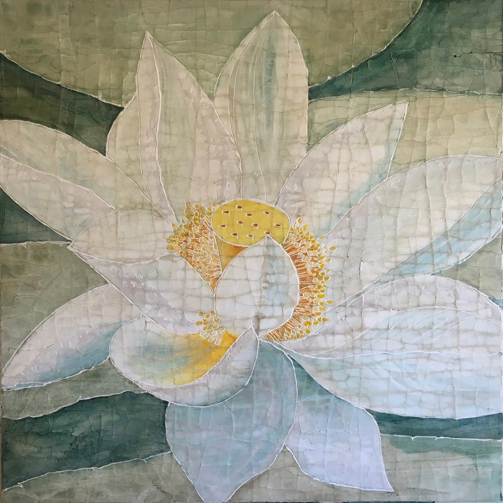 Water Lotus White 1