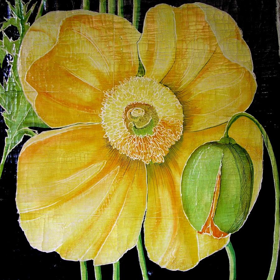 Yellow Poppy with pod