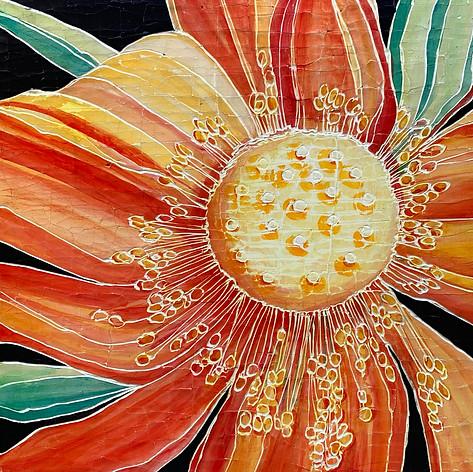 Multi colored Lotus
