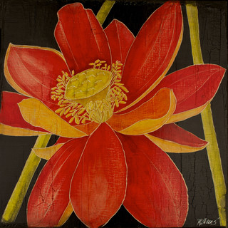 Red Lotus with stems