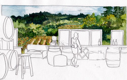 Winery mural design sketch