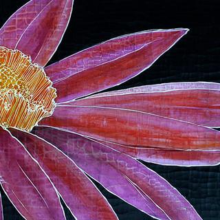 Earthgrid BotanicalsAV.jpg