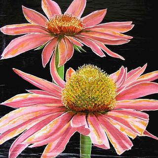 Botanicals 6x638.jpg