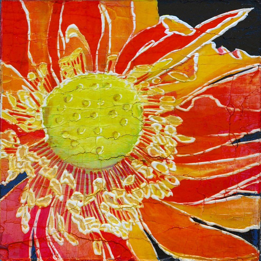 Red Orange Lotus