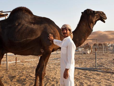 Oman - UAE